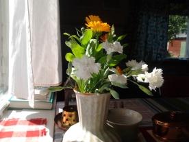 Orange blossom and white garden carnation - 2014