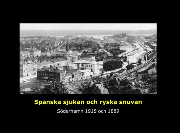 Omslag- Spanska sjukan & ryska snuvan, (Zamzar)